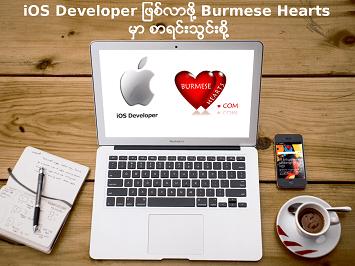 iOS Developer course